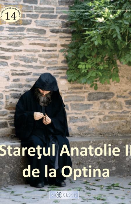 Starețul Anatolie II de la Optina, Pr. Teoctist Caia