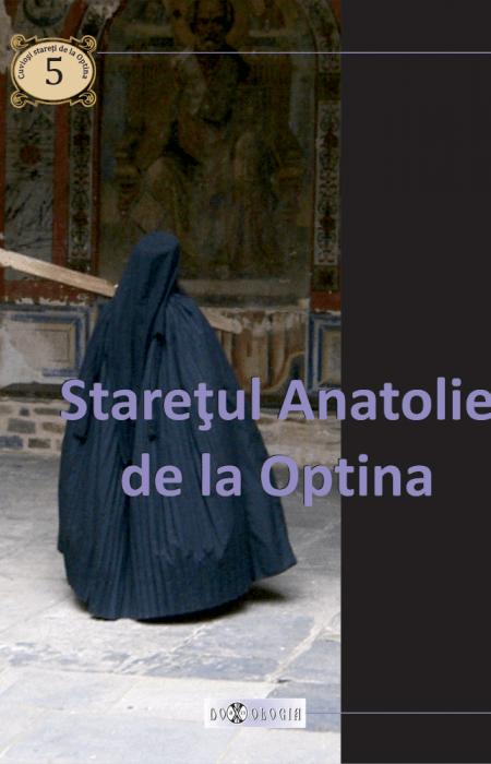 Stareţul Anatolie de la Optina, Pr. Teoctist Caia